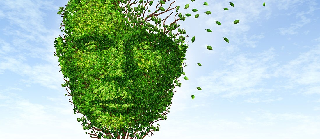 Root Cause of Alzheimer's Disease? | Insightful Nutrition